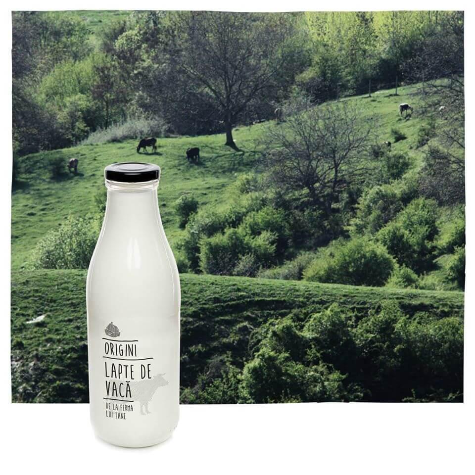 Lapte de vaca Origini